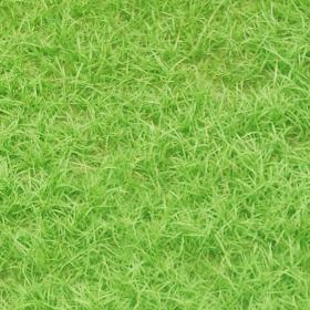 砂利敷き・芝生張り